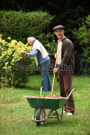 coppia di anziani raccolta foglie