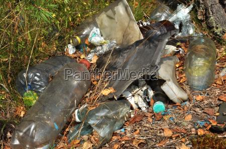 garbage in foresta