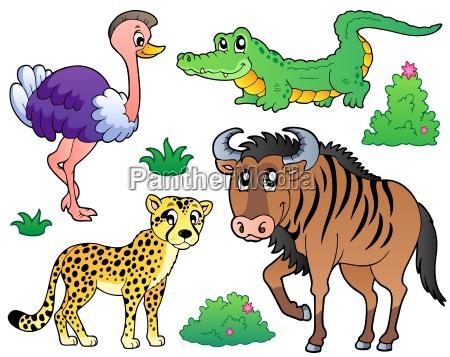 savannah animali raccolta 2