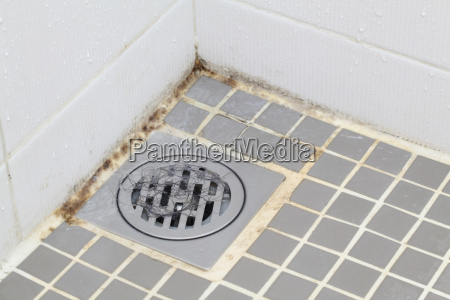stampo, in, bagno - 6345043