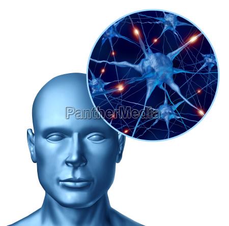 intelligenza umana con neuroni attivi