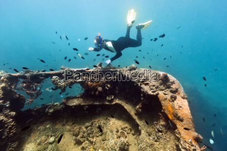 shipwreck and diver