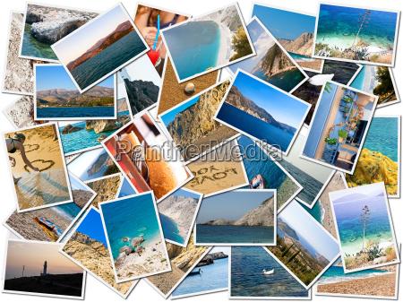 sea life collage di foto