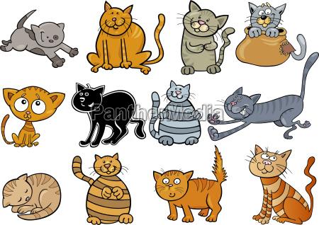 set di gatti dei cartoni animati