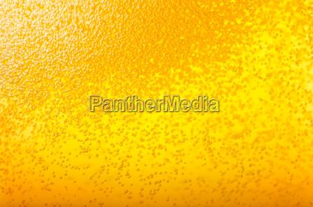bolle nella birra