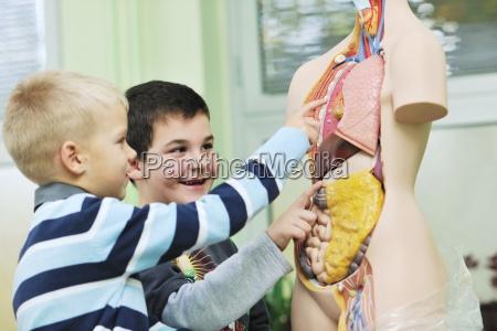 imparare la biologia a scuola