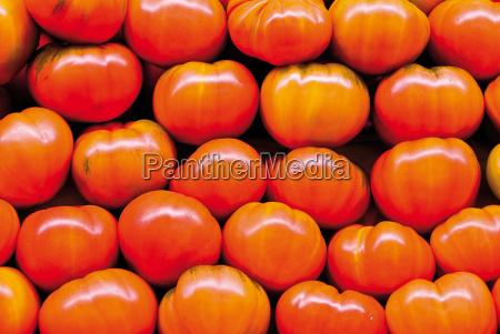 vitamine pomodori rosso fresco sano