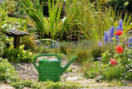 watering the garden pond