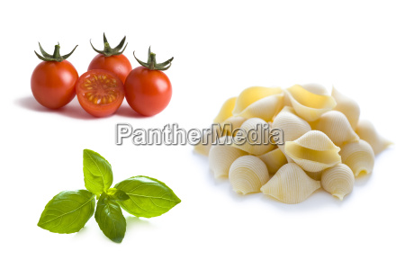 conchiglioni pasta shells tomatoes and basil