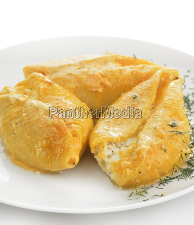 pasta shells filled with cheese