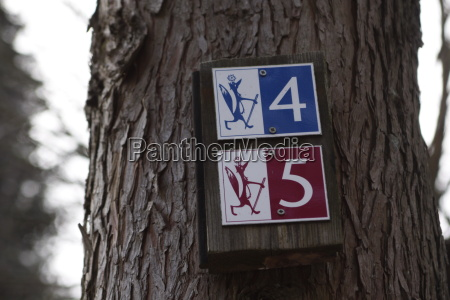 cinque escursione gita quattro volpe cartello