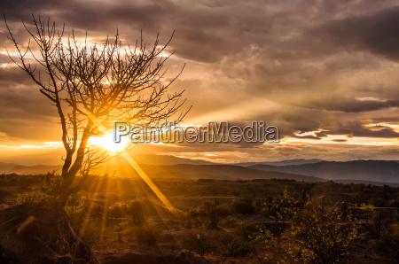 deserto alba allaperto colombia paesaggio natura