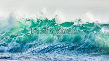 onda della spuma