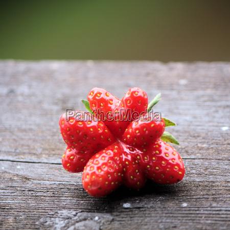 frutta fragola bacche tavola di legno