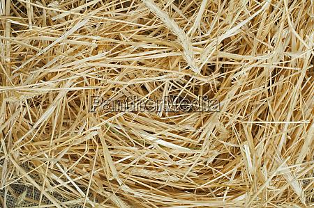 straw close up background