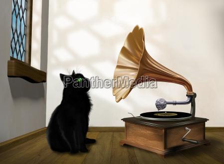 ascoltare musica disco record registrazione incisione