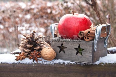 inverno verde legno freddo fascio caucasico
