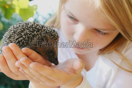 mano selvaggio animali proteggere interruttore giovani