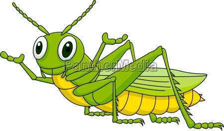 grasshopper cartone animato