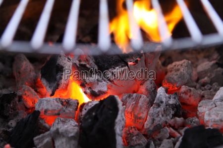 carbone calore
