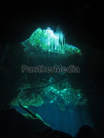 grotta riflesso giungla immergersi tuffarsi rifrazione