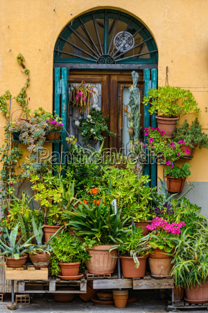 stile di vita romantico fiore fiori