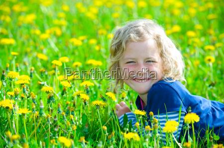 fiore fiori primavera tarassaco bello carino