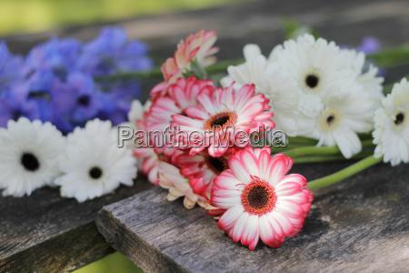 garden flowers on old oak boards