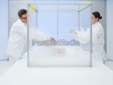 veloce materiale biologico freezong in camera