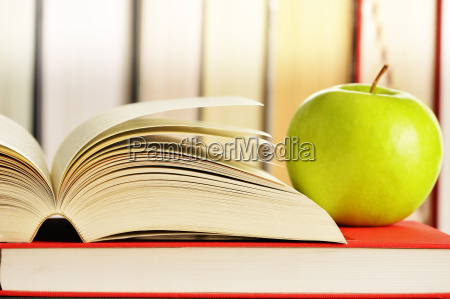 pila biblioteca saggezza filosofia weltanschauung libro