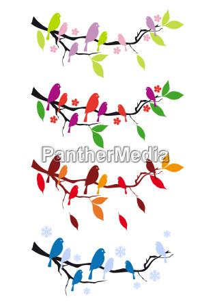 uccelli su albero in quattro stagioni