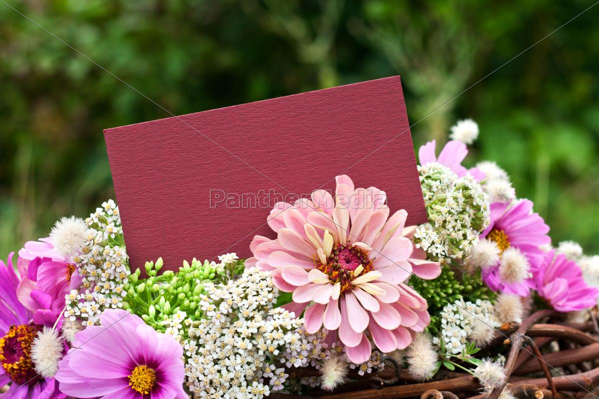 blu, presentare, foglia, fiore, verde, legno - 9760218