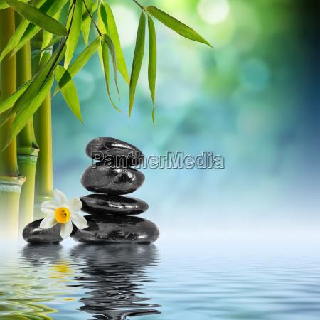 pietre e bambu in acqua con