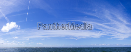 sky panorama with cirrus clouds