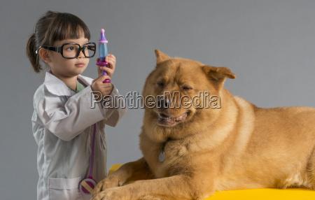dottore medico cane capretto veterinario giovani