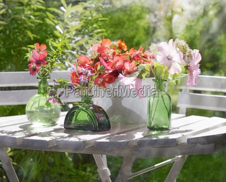 flower garden leisure