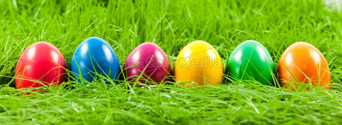 uova, di, pasqua, in, erba, verde - 10045386