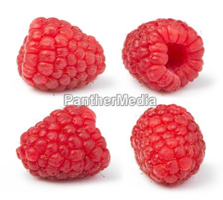 raspberries white isolated