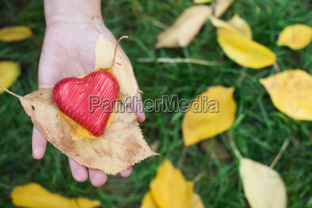 hand holding red heart and autumn