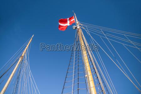 albero e bandiera danese su un
