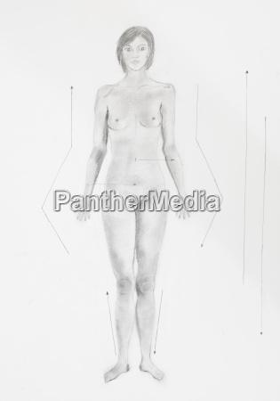 dettaglio delle donne posizione anatomica convenzionali