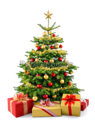 poet christmas tree with gifts in