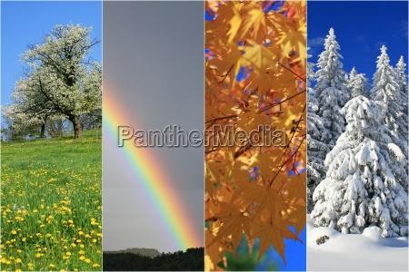 inverno estate quattro primavera collage stagioni
