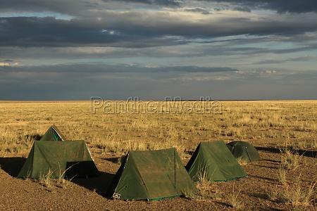savana mongolia steppa allaperto campeggio tenda