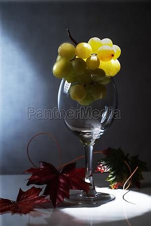 bere vino alcool vetro bicchiere di