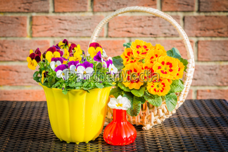 decoration with spring flowers