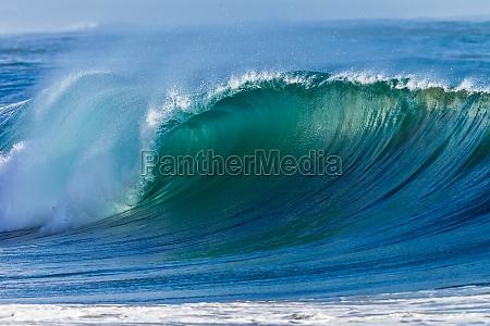 ocean wave acqua parete