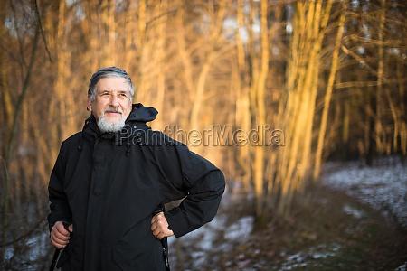 anziano, nordic, walking, godendo, la, vita, all'aria - 11402106