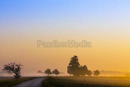 strada sterrata campo nebbia acro aurora