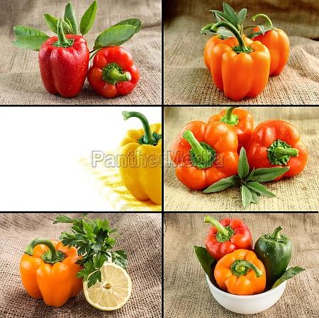 concetto di cibo sano e biologico